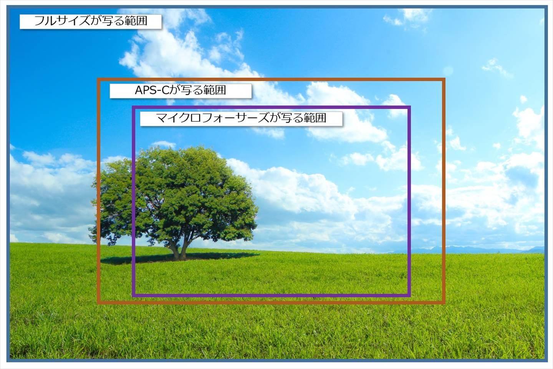 各センサーサイズが写る範囲比較