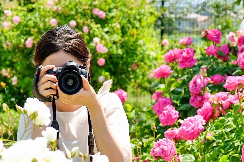 好きなカメラで撮ろう